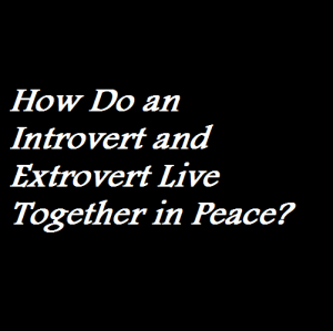 How Do an Introvert and Extrovert Live Together in Peace
