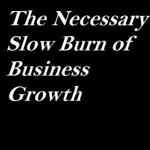 The Necessary Slow Burn of Business Growth